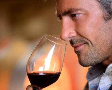 Experiência Enólogo   Curso de Vinhos & Degustação 3 Pratos   Gaia