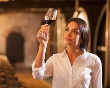 Visite a Adega Venâncio da Costa Lima! Prova de Vinho & Moscatel p/ 2