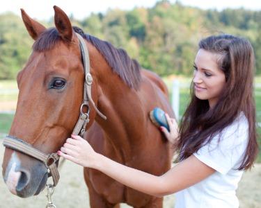Adeus Stress! 1 ou 3 Sessões de Terapia Equestre - Quinta Oliveira