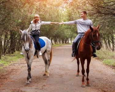 Relaxe com Terapia Equestre para Dois | Coudelaria Qta. Oliveira