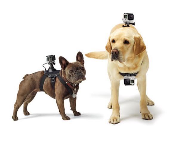 Acessório para GoPro   Arnês de Peito para Cães