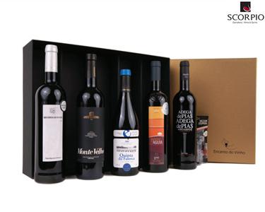 Pack 5 Garrafas de Vinho Tinto   Encanto do Vinho