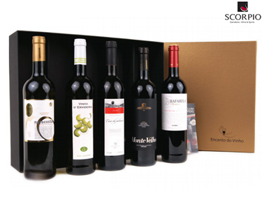 Pack 5 Garrafas de Vinho | 3 Tintos, 1 Branco & 1 Verde