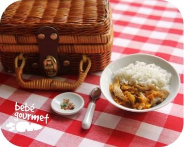 Bebé Gourmet   4 Deliciosos Menus para Crianças!
