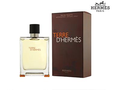 Perfume Terre DHermès EDT 75ml | Hermes Paris®