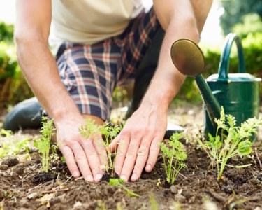 Workshop de Plantas & Jardinagem Outono-Inverno