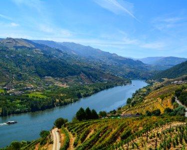 1 a 3 Nts c/ Vista sobre o Vale do Douro | Casa dos Rui´s - Tabuaço