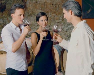 Prova de Vinhos em 4 Horas | Curso Nível I do Clube de Vinhos e Sabores - Lisboa