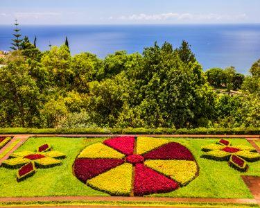 Festa da Flor 2016 | Madeira | Voos + 2, 3 ou 4 Noites