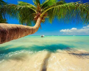 Corra Atrás do Verão! La Romana - Rep. Dominicana | Voos + 7 Nts em TI