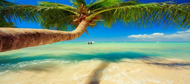 Antecipe o Seu Verão! La Romana - Rep. Dominicana | Voos + 7 Nts em TI