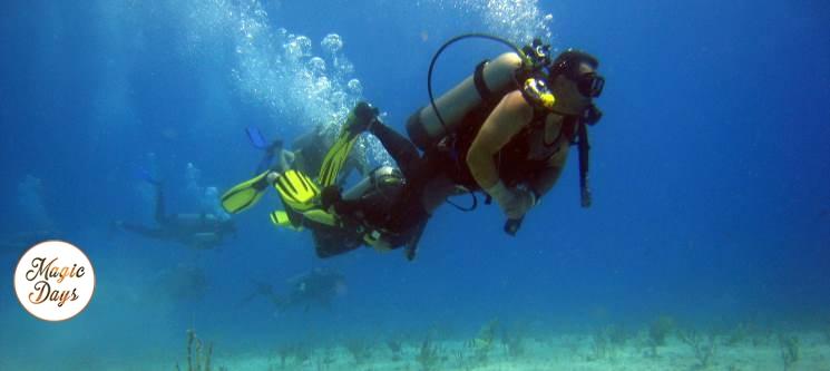 Workshop + Baptismo de Mergulho na Arrábida | 1 ou 2 Pessoas | Fascinante Mundo Subaquático!