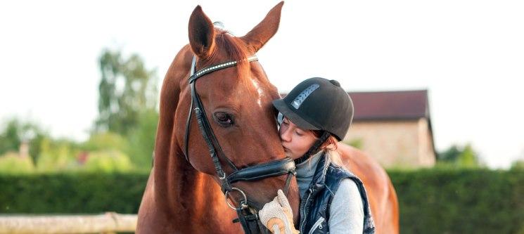 1 ou 3 Meses de Aulas de Equitação   Póvoa de Varzim - 30 Minutos
