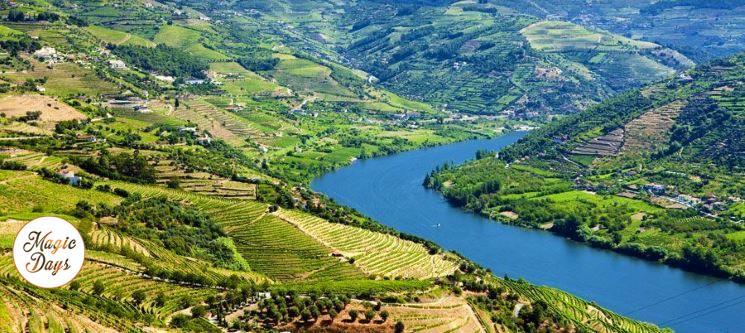 Passeio no Douro + Almoço e Vinho do Porto para Dois | Porto - Régua